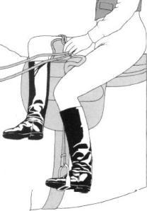 Side Saddle Illustration