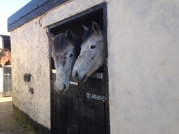 Ben & Roger: curious to meet new Riders