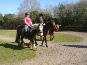 Outdoor Riding Lesson